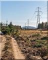 NH6335 : Newly Upgraded Pylon Line by valenta