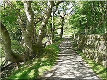 SE1226 : Bird Holme Lane, Hipperholme by Humphrey Bolton