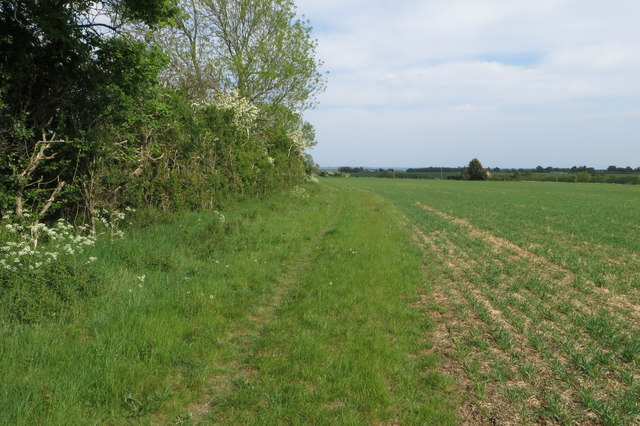 Bridleway towards Tythe Farm