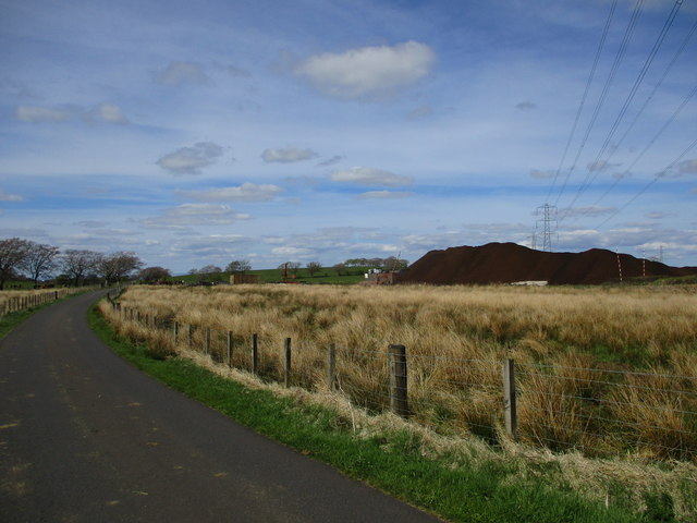 Peat and pylons, Cladance Moss