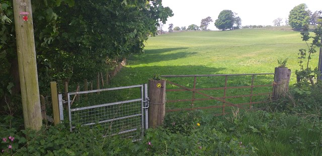 Core path gate at Summerfield