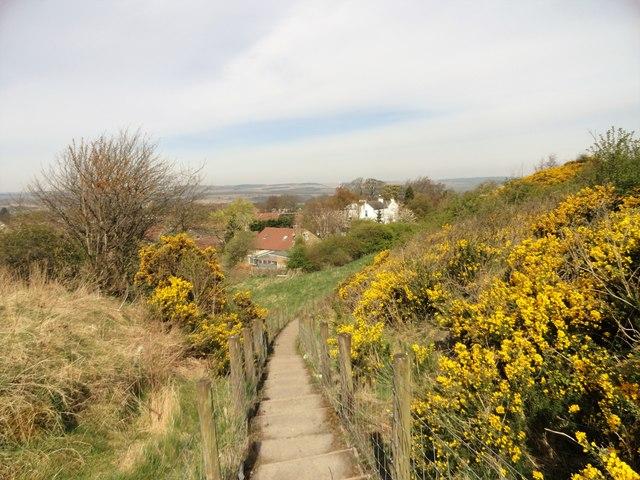 Path down to Blackfyne