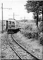 SC4382 : Manx Electric Railway, Ballabeg – 1963 by Alan Murray-Rust