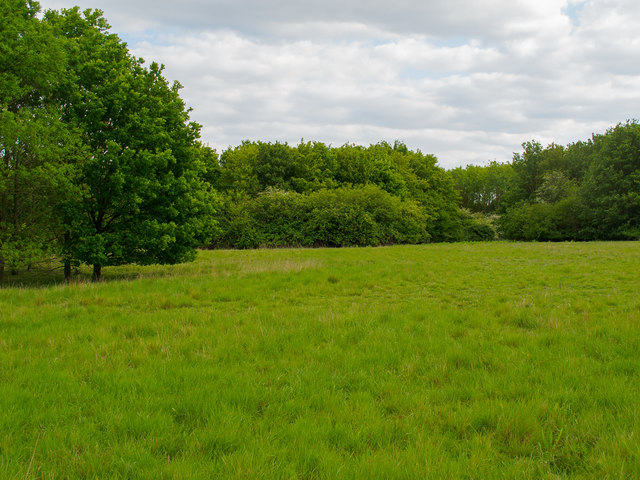 Open Area near Thames Chase Forest Centre (Broadfields)