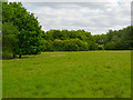 TQ5885 : Open Area near Thames Chase Forest Centre (Broadfields) by Roger Jones