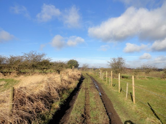 Muddy path near Crookhall