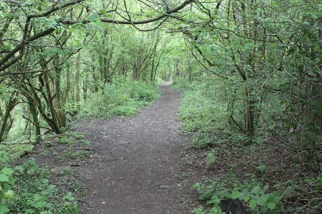 Path on former mineral line trackbed, near Gwrhay