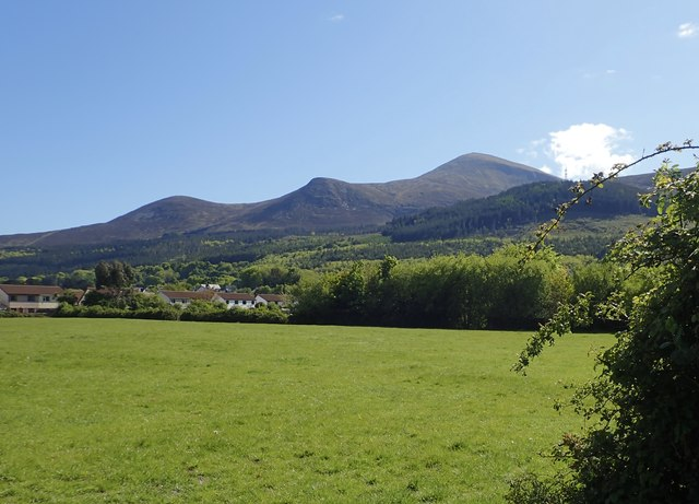 View across grazing land towards of the flank of the High Mournes