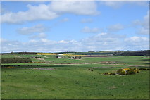 NJ8118 : View over the Aberdeenshire fields by Bill Harrison