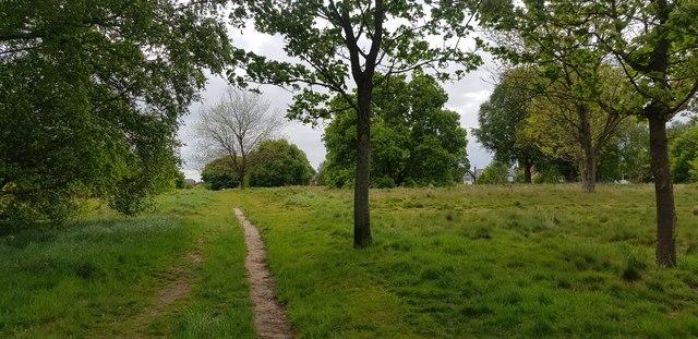 Hodge Hill Common