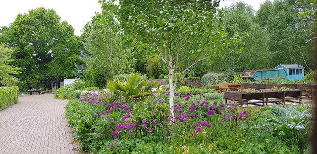 Television Garden, Kings Heath Park