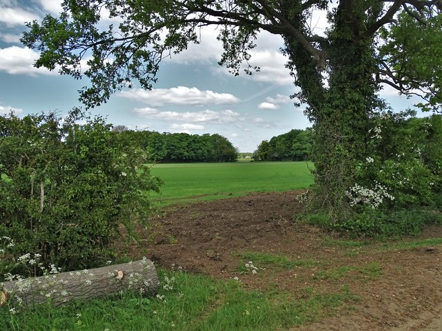 Country view at Old Park, Redbourne