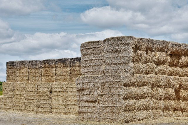 Mendham: Large supply of baled hay