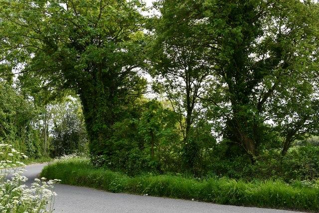 Dennington: Maypole Green