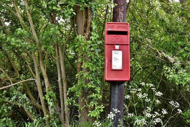 Maypole Green postbox