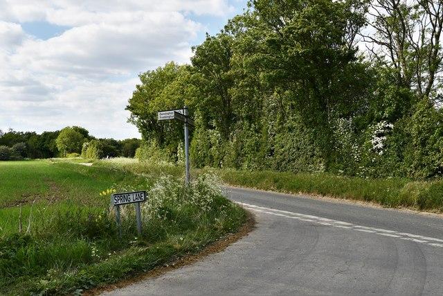 Tannington: Spring Lane
