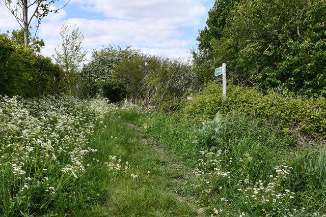 Tannington: Public footpath