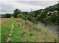 SO5632 : Footpath by the Wye by Hugh Venables