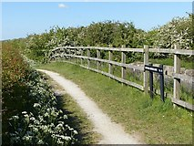 SK6736 : Cropwell Middle Lock by Alan Murray-Rust