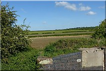 SK6636 : View at Cropwell Bottom Lock by Alan Murray-Rust