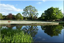 SE6250 : Lake and Derwent Lawns by DS Pugh