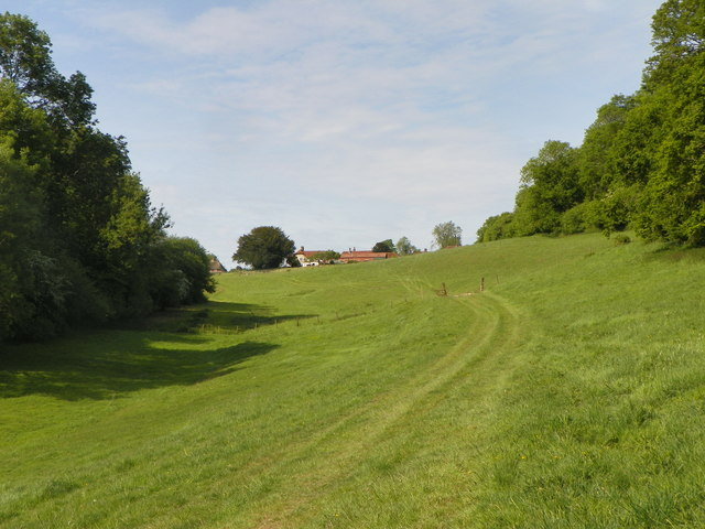 Looking up the meadow towards Homelands Farm