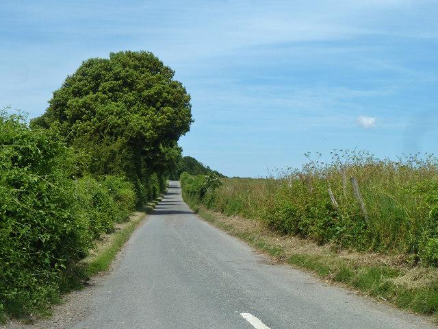 Thornton Lane