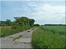 TR2854 : Track to Little Tickenhurst Farm by Robin Webster