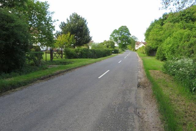 The road to Robin's Folly