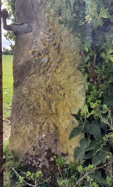 Benchmark on stone gatepost on Low Park Lane