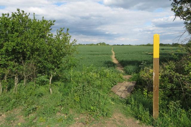Footpath to Thurleigh