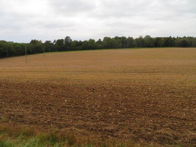 Fields south of Malshanger Park