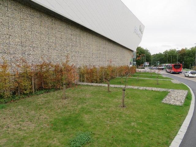 Urban landscaping John Lewis style