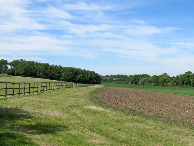 A Cambridgeshire landscape