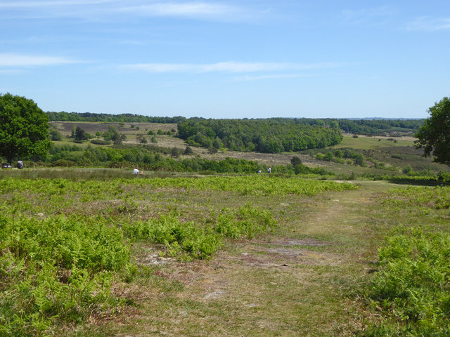 View south-east over Ashdown Forest