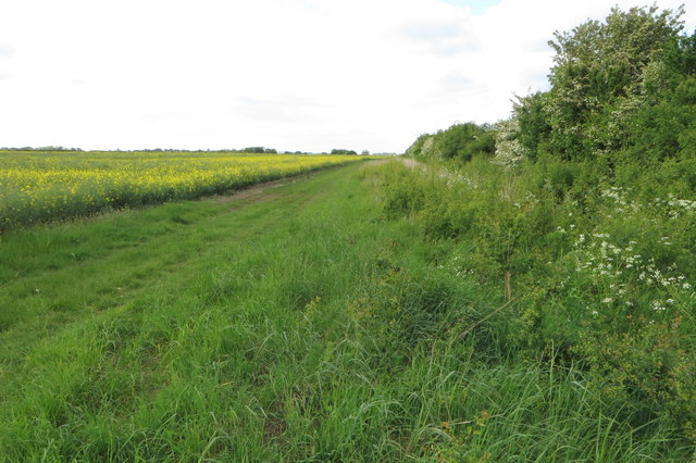 Bridleway to Mill Road