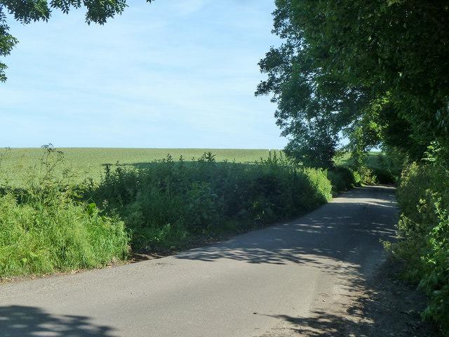 Lane towards Ham church
