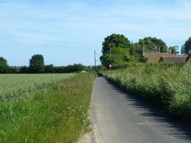 Lane from Ham towards Finglesham