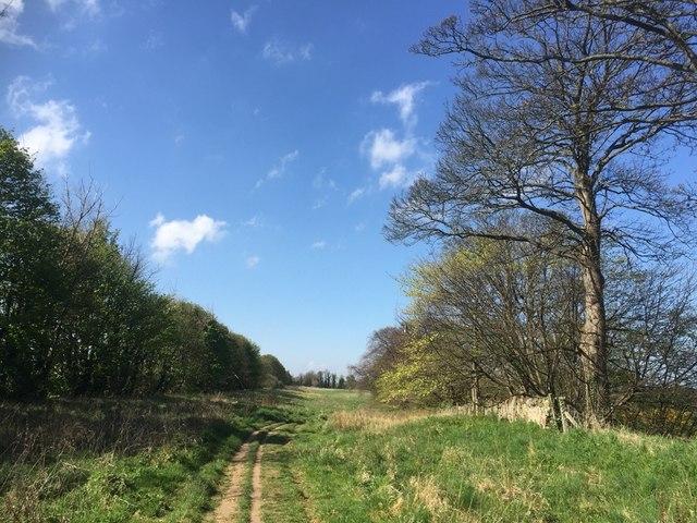 Path near Seton Mains