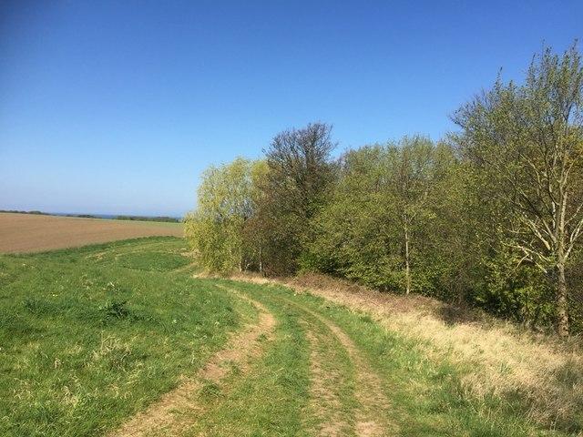 Path near Longniddry