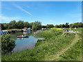 SP3300 : Picnicking beside the Thames near Tadpole Bridge by Vieve Forward