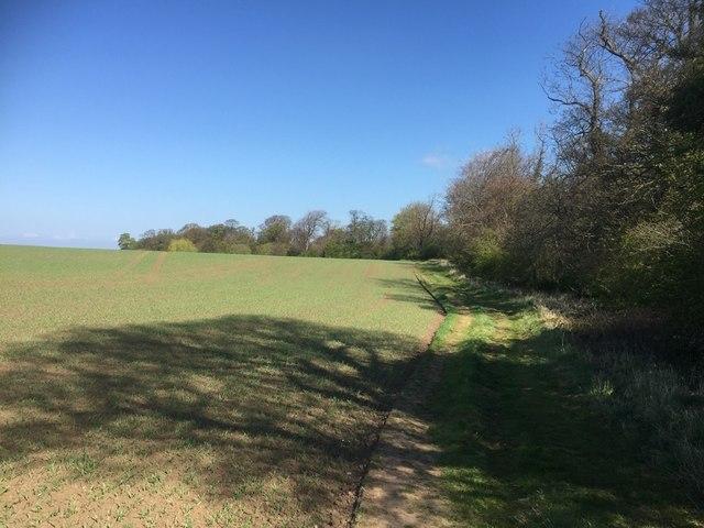 Arable land between Seton Mains and Longniddry