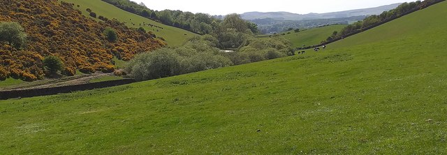 Horsebog Loch