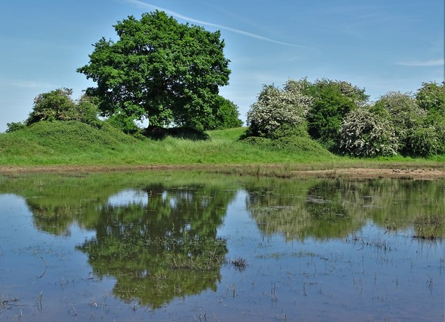 Farm pond with reflections north of Boyah Grange