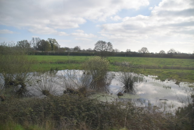 Pond, Marden Meadow Nature Reserve