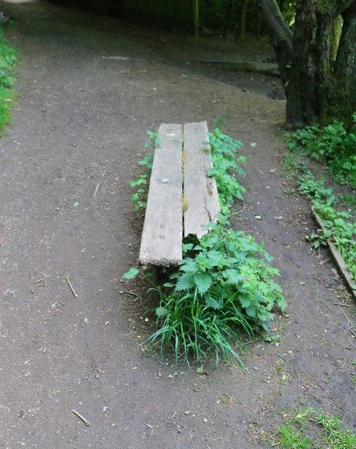 Decrepit old bench