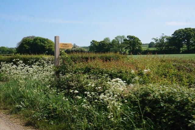 Fingerpost on Marton Road near Sinnington
