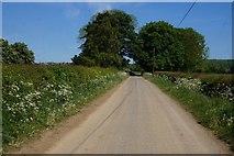 SE7484 : Marton Road towards Sinnington by Ian S