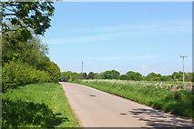 SU1882 : Day House Lane by Wayland Smith