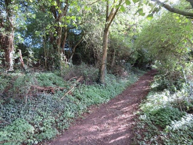 Footpath leaving North Waltham